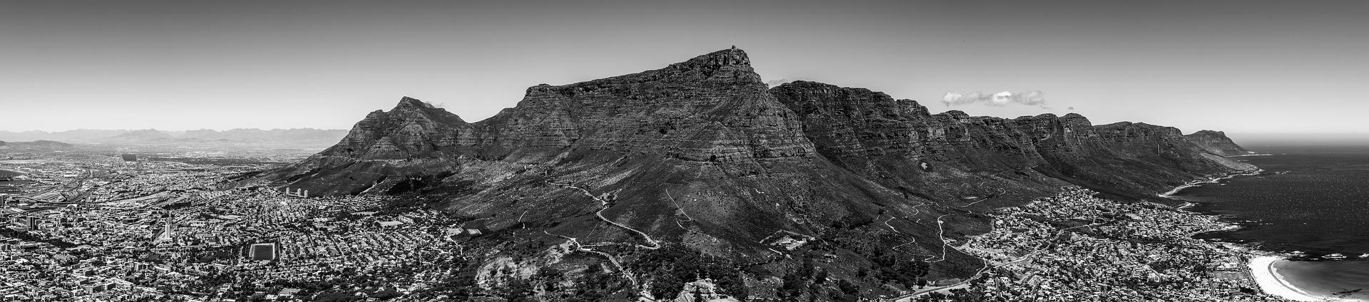 Cape Town Locals